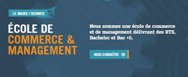 Bachelor Marketing