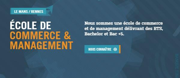 bachelor finance
